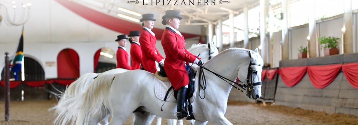 SA Lipizzaners' Classical Performance – Kyalami