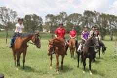 Vega Equestrian Club (Jhb E)