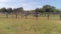 Amberfields Stables - Stabling available (Livery or DIY) - Linbro Park, Sandton