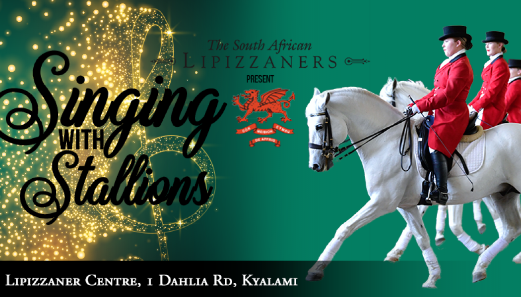 Singing with Stallions – SA Lipizzaners, Kyalami